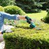 Komplet akumulatorskih škarij za grmičevje in travo Isio